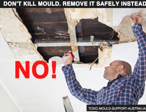 Remove, Don't Kill Mould – Part 2 – Contents
