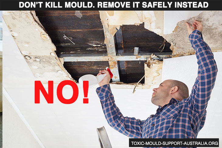 Toxic Mould Support Australia - Remove, don't kill mould